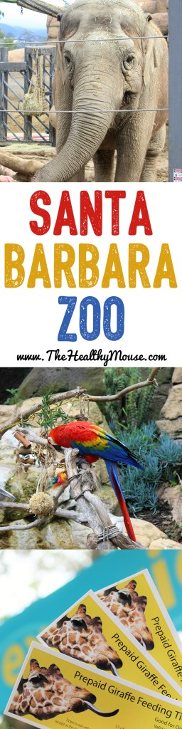 A visit to the Santa Barbara Zoo - Best things to do with toddlers Santa Barbara - Travelling to Santa Barbara - Things to do in Santa Barbara - Family Activities Santa Barbara
