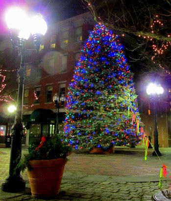 img_2517-haverhill-christmas-tree-2013