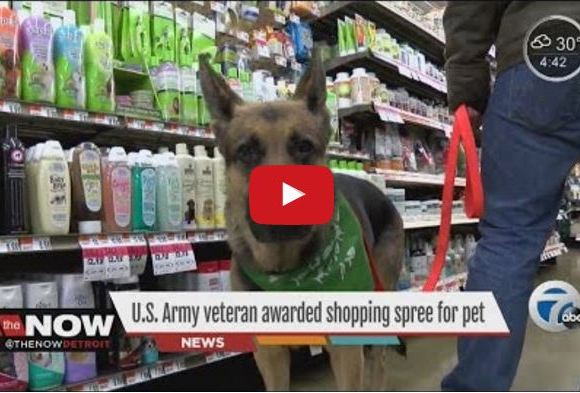 Army Veteran Surprised With $500 Shopping Spree To Spend On His German Shepherd