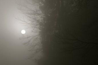 Le soleil derrière la brume