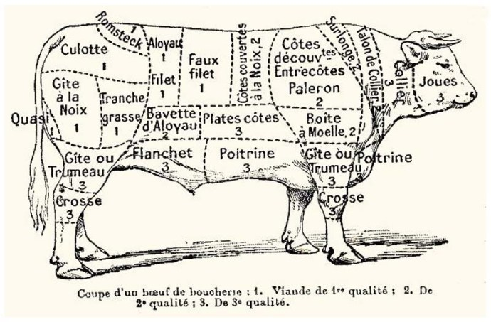 Beef cuts - French