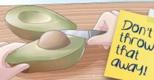 dont-throw-avocado-seeds