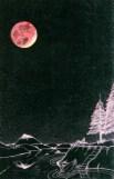 Man in Moon Over Eagle Ridge full moon image