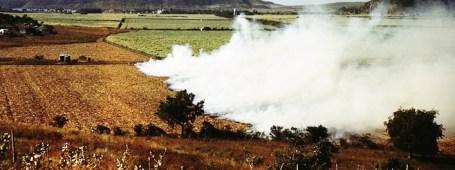 http://commons.wikimedia.org/wiki/File:Burning_a_field_of_sugar_cane,_vicinity_of_Guanica_(LOC_fsac.1a34033).jpg