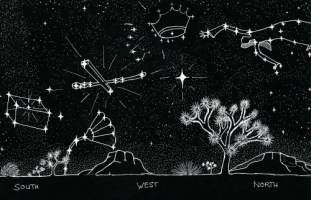 summer constellation w/woman & ark