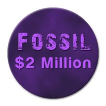 Token_Fossil