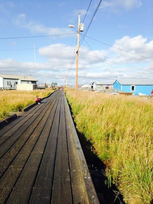 Alaska boardwalk in Selawik 1