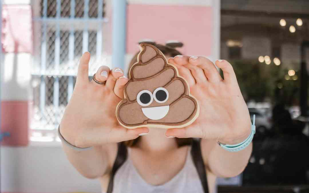 The Curious Case of Poop Map