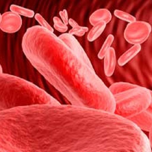 NEET SS Clinical Hematology 2019 Test Series - TheHematologist org