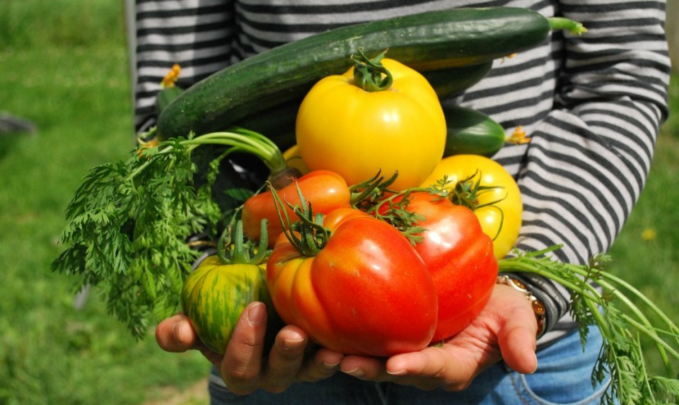 Myths About Eating Raw Vegetables
