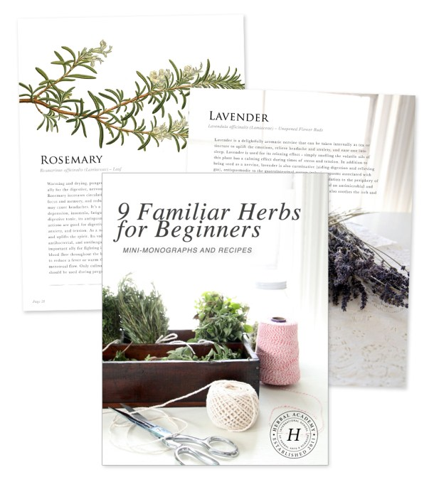 6 herbal medicine books worth the investment 9 familiar herbs for beginners ebook free ebook fandeluxe Choice Image