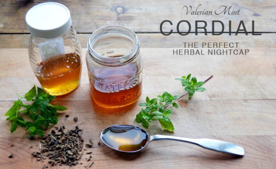 Valerian Mint Cordial: The Perfect Herbal Nightcap