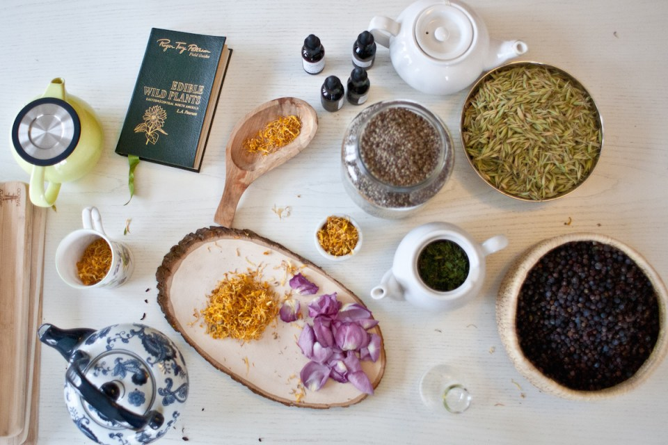 The Online Introductory Herbal Course - for beginners