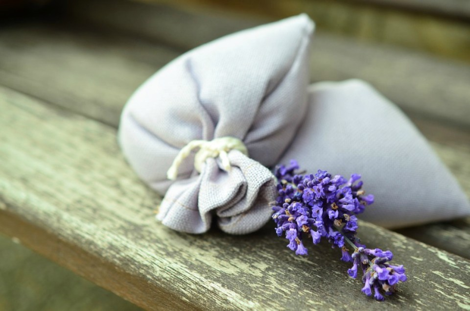 lavender-823584_960_720