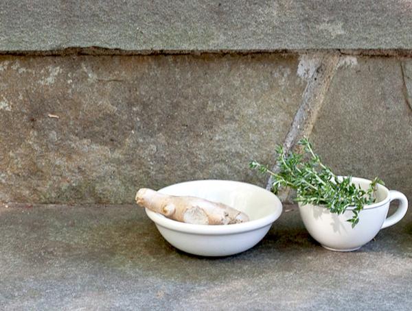 Advanced Herbal Studies - Food is Medicine - Herbal Academy