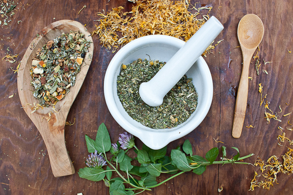 Online Intermediate Herbal Course - herbalist studies