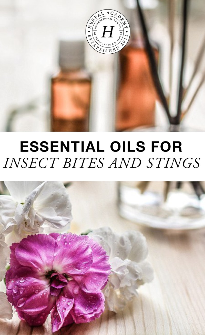 essential oils for insect bites and stings