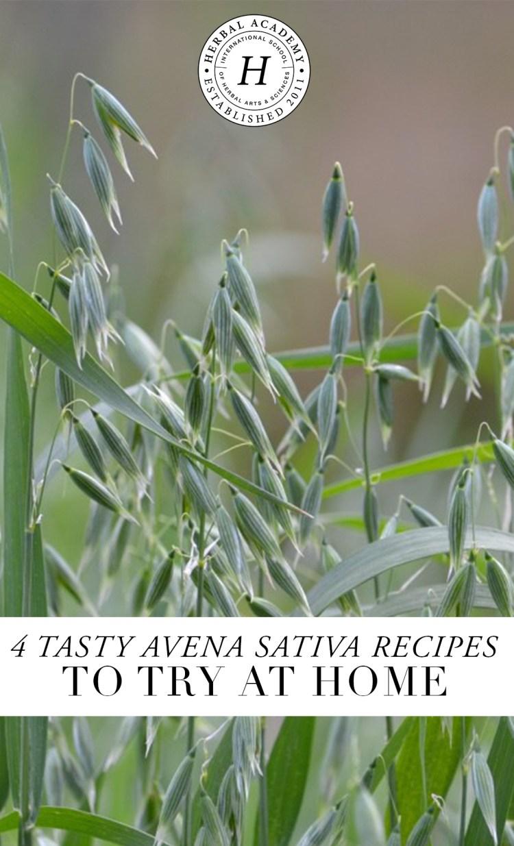 Tasty Avena Sativa Recipes