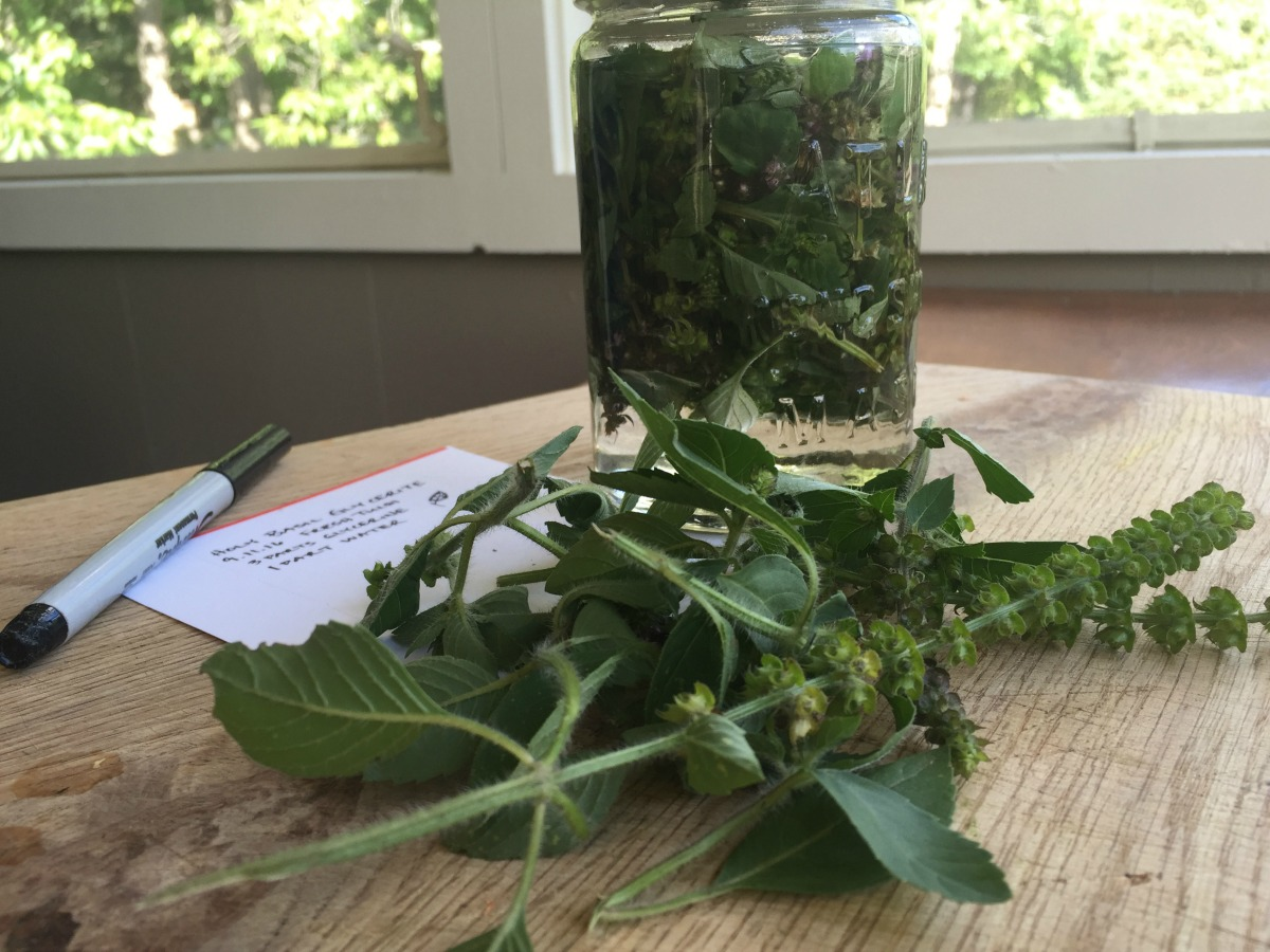 Demystifying Weight-to-Volume Tinctures – Herbal Academy