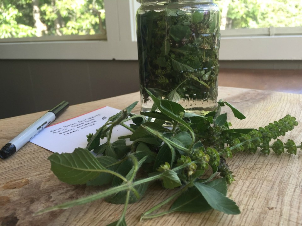 Demystifying Weight-to-Volume Tinctures | Herbal Academy | It's important to understand what weight-to-volume tinctures are, and how to use this understanding to formulate our own tinctures.
