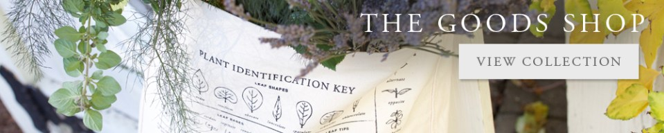 Designing An Herb Garden Herbal Academy Blog