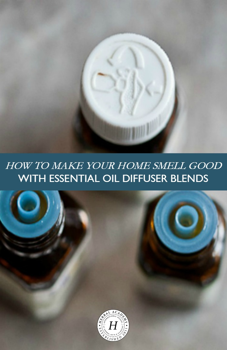 How To Make Your Home Smell Good With Essential Oil Diffuser Blends | Herbal Academy | Aromatic herbs and essential oils can create a homey atmosphere for your family to enjoy. Make your home smell good with essential oil diffuser blends!