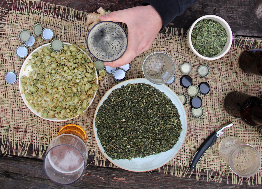 The Craft of Herbal Fermentation Short Course by the Herbal Academy