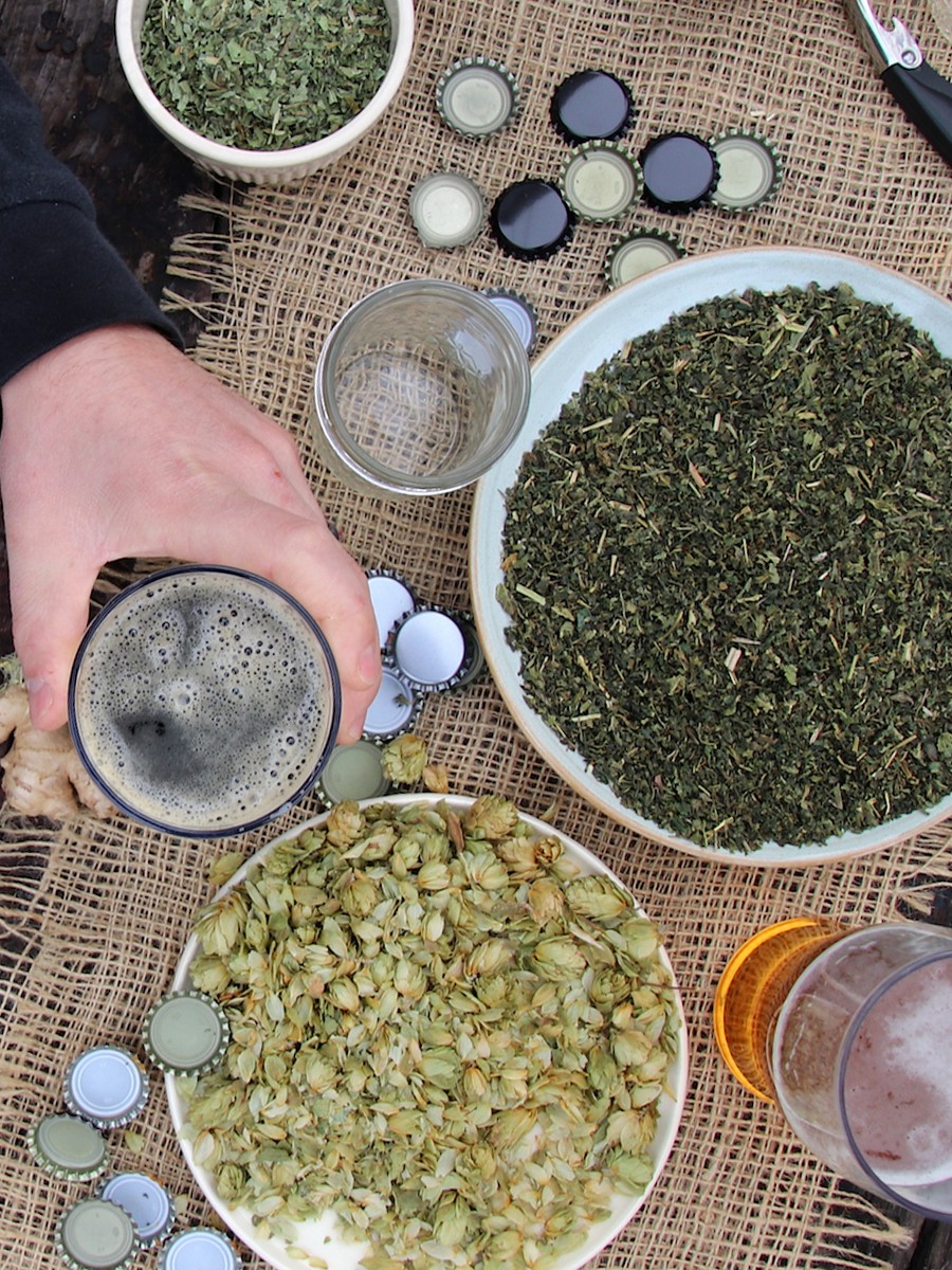 Herbal Beer and Ale - Fermentation Course by Herbal Academy