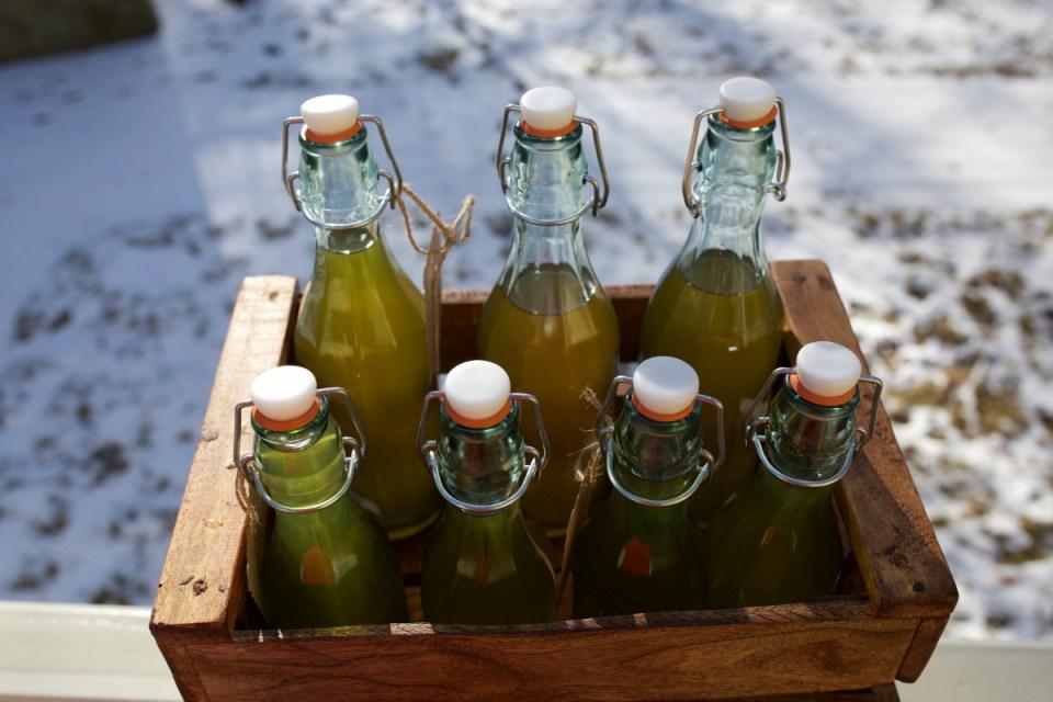 How To Make Herbal Kombucha Champagne