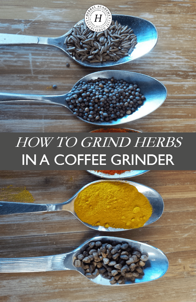 How To Grind Herbs In A Coffee Grinder | Herbal Academy | Do you know grinding herbs makes it easier for the medicinal properties to be extracted when making herbal preparations? Here's how to easily grind herbs in a coffee grinder!