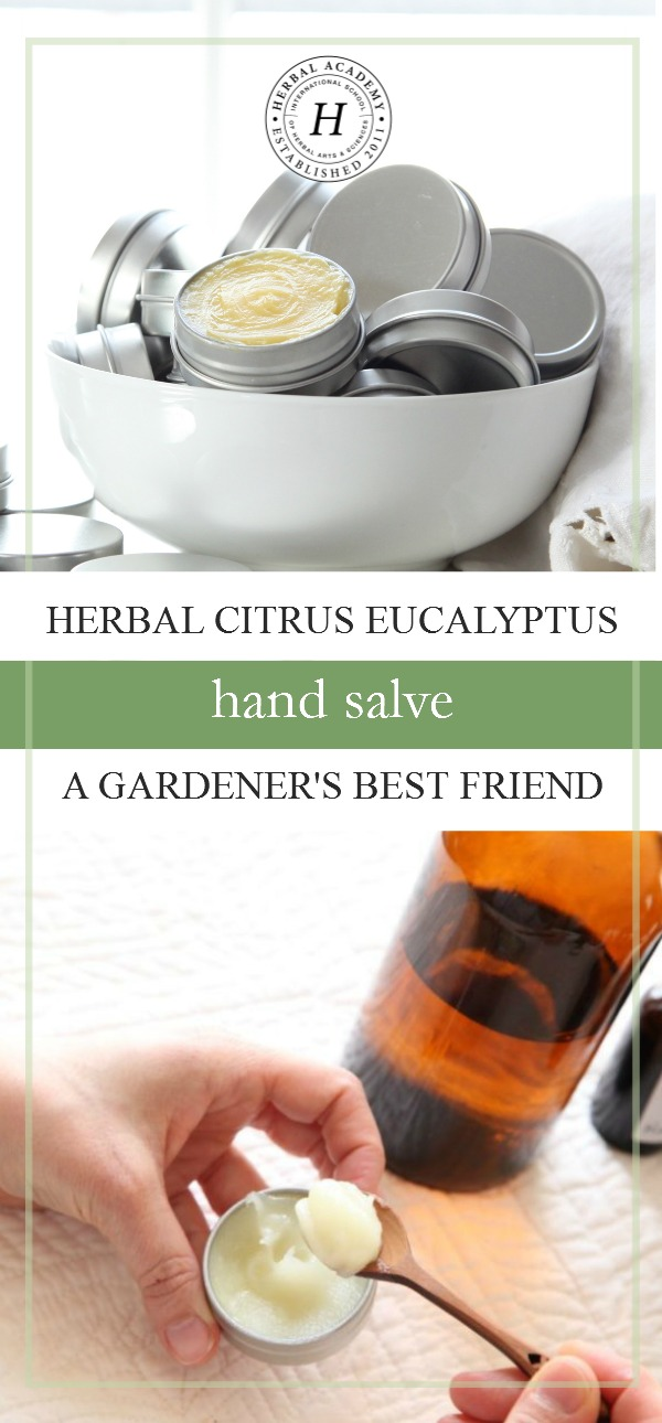 Herbal Citrus Eucalyptus Hand Salve: A Gardener's Best Friend | Herbal Academy | This herbal citrus eucalyptus hand salve will not only moisturize your gardening hands, it will soothe insect bites, scrapes, and cuts!