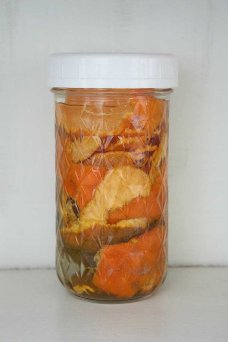 4 Ways To Use Leftover Orange Peels | Herbal Academy | If you're a fan of oranges, you'll love these 4 ways to use the leftover orange peels!