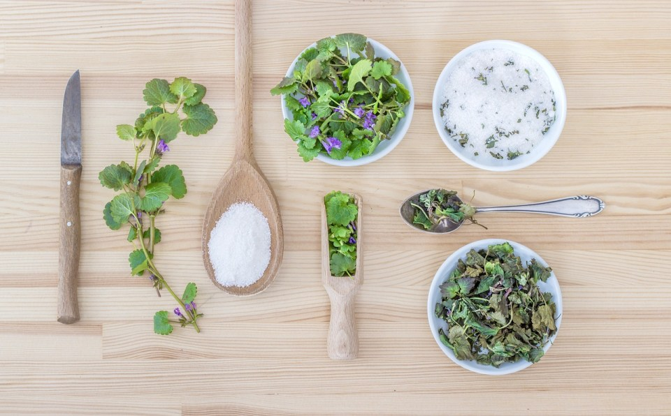 Simplifying Herbal Skin Care: 5 Basic Recipes To Get You Started   Herbal Academy   Looking for easy homemade herbal skin care recipes? Here's 5 DIY skin care recipes that are both simple and basic to get you started!