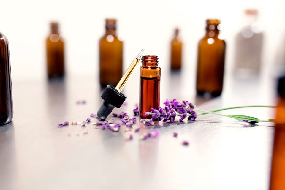 How To Choose the Right Lavender Essential Oil | Herbal Academy | Lavender essential oil is one of the most popular oils out there. But how do you choose the right one? Let us help you make that choice with confidence!