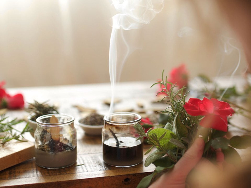 Introducing Our Newest Short Course: Herbal Self-Care For Stress Management | Herbal Academy | The Herbal Academy team has been working behind the scenes on our newest short course: Herbal Self-Care For Stress Management! Check it out today!