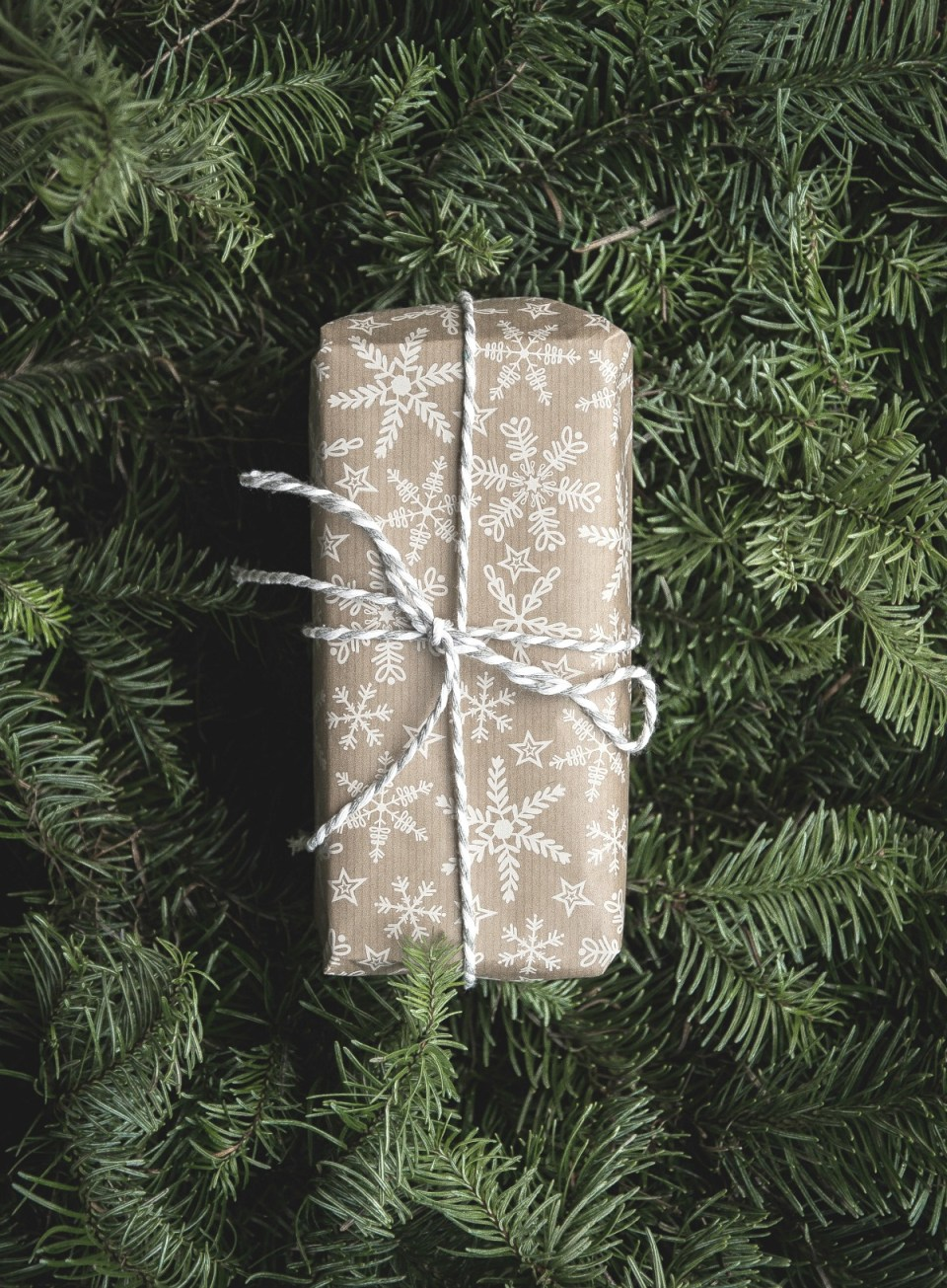 The Herbal Academy Holiday Pop-Up Shop Is Open! | Herbal Academy | Our holiday pop-up shop is now open and we have some awesome herbal goods, perfect for the gift-giving season! Come check it out!
