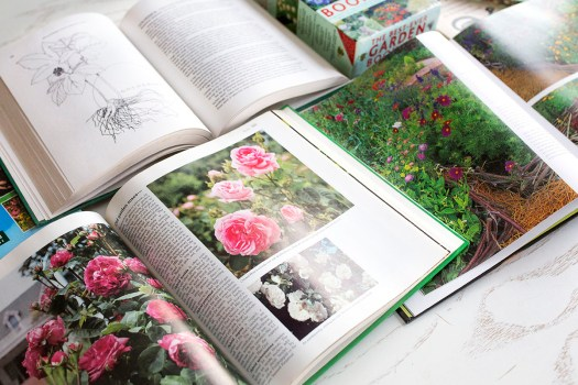 5 Herb Gardening Books To Inspire Your Next Botanical Garden   Herbal Academy   Whether you are a seasoned herb grower or a newbie, we've compiled five herb gardening books that are sure to help inspire your next botanical garden.