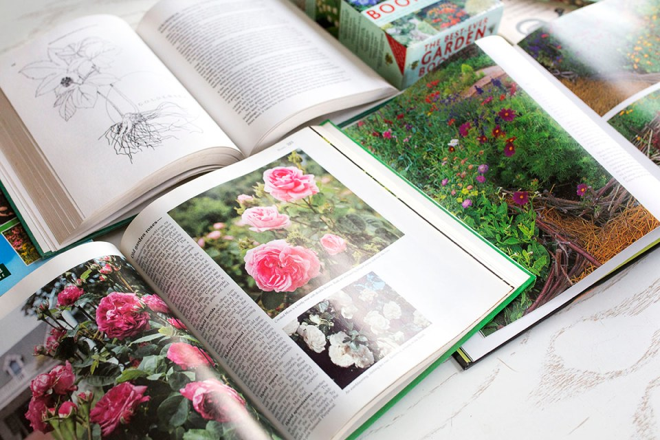 Herb Gardening For Dummies Cheat Sheet
