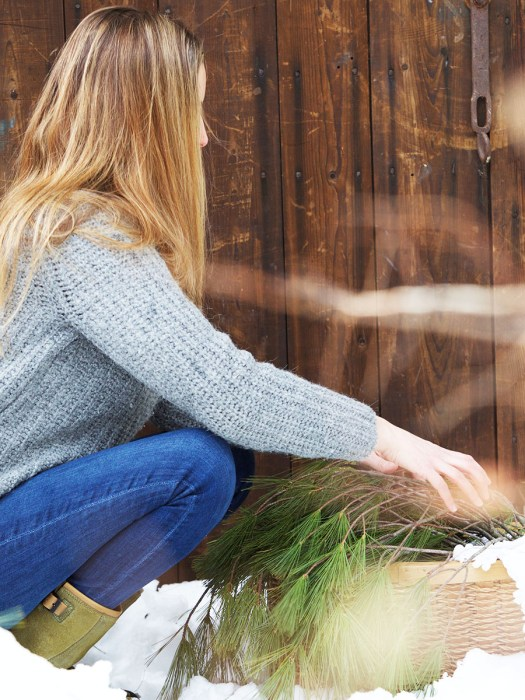 How To Harvest Bark From Trees and Shrubs Correctly | Herbal Academy | Ever wanted to harvest bark from trees or shrubs? In this post, we'll teach you four bark harvesting rules to follow so you can harvest bark correctly.