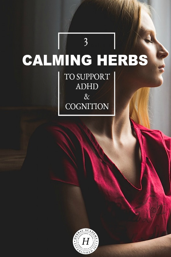 3 Calming Herbs to Support ADHD & Cognition | Herbal Academy | Whether you struggle with ADHD or it's a family member or a client, here are three calming herbs to support ADHD & cognition.