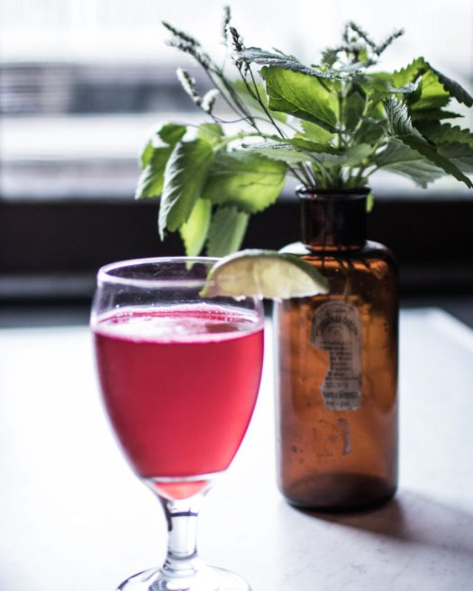 Herbal Beer: An Ancient Drink for Modern Times | Herbal Academy | In this post, we are sharing how to make a refreshing brew of herbal beer, as well as its use in history and its benefits in modern times!