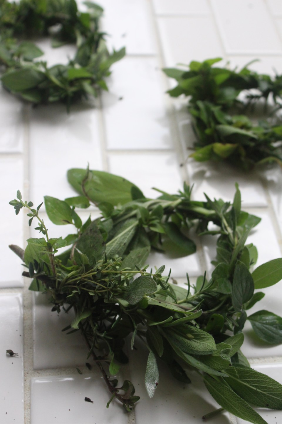 How To Make DIY Herbal Soup Rings | Herbal Academy | Take your water-based foods to the next level by using these herbal soup rings to amp up the flavor and nutritional benefits! Learn to make them in this post.