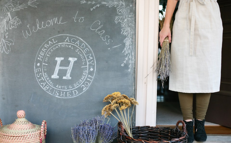 all new HERBALISM COURSES at the Herbal Academy