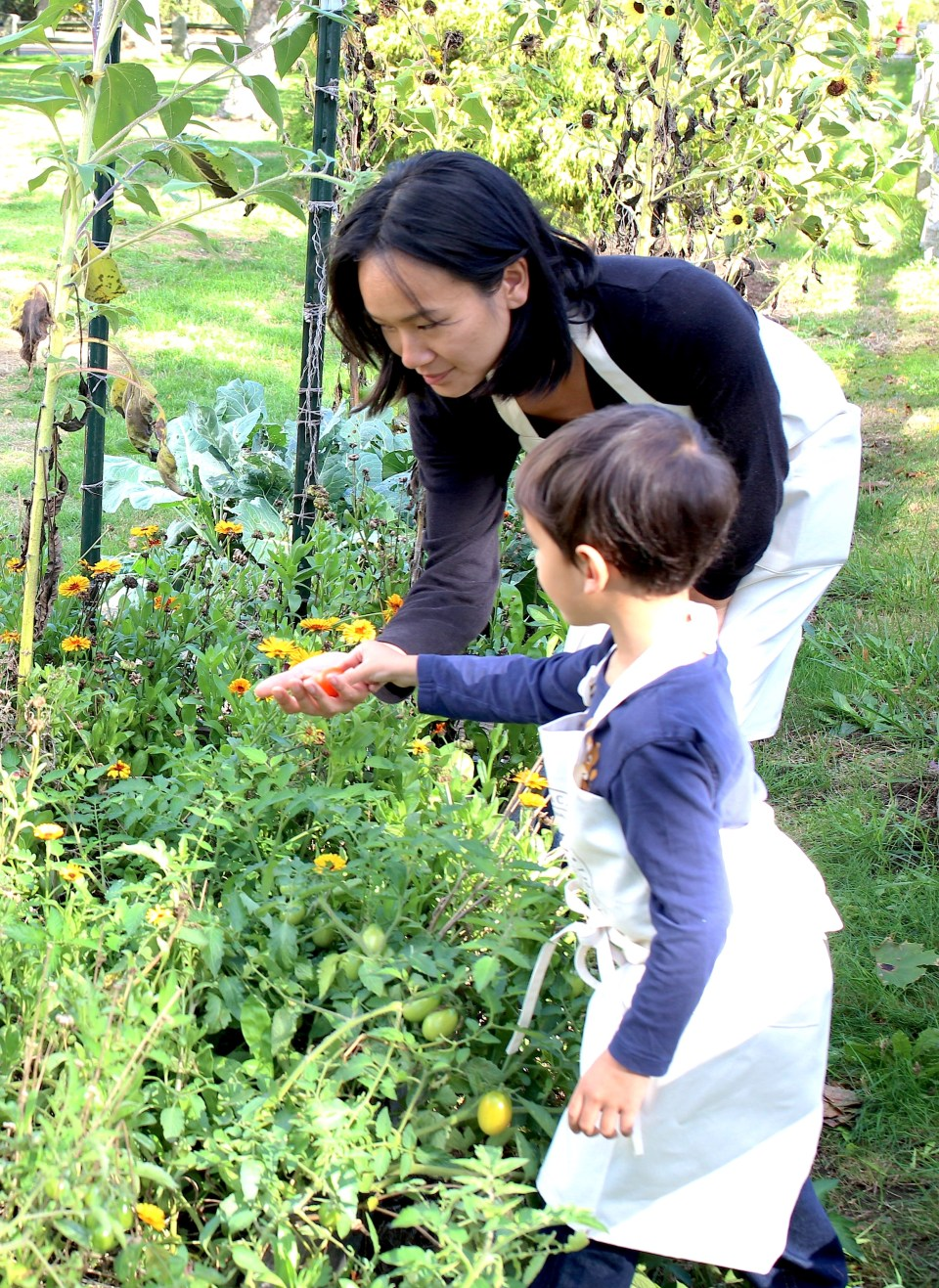 How To Care For Your Family Naturally As A Family Herbalist | Herbal Academy | There are many ways one can practice as an herbalist—one very popular way is being a Family Herbalist! Learn all about it in this post!
