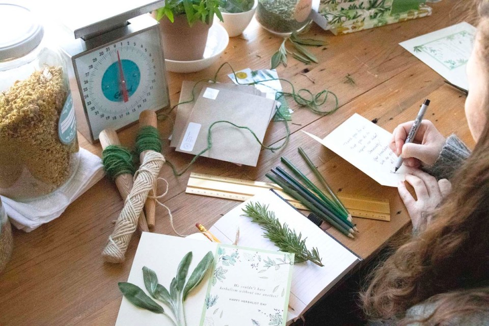 How To Honor Herbal Teachers With Your Stories   Herbal Academy   Herbalist Day is April 17th, and one way you can honor herbal teachers is by sharing your stories with the person who touched and inspired you.