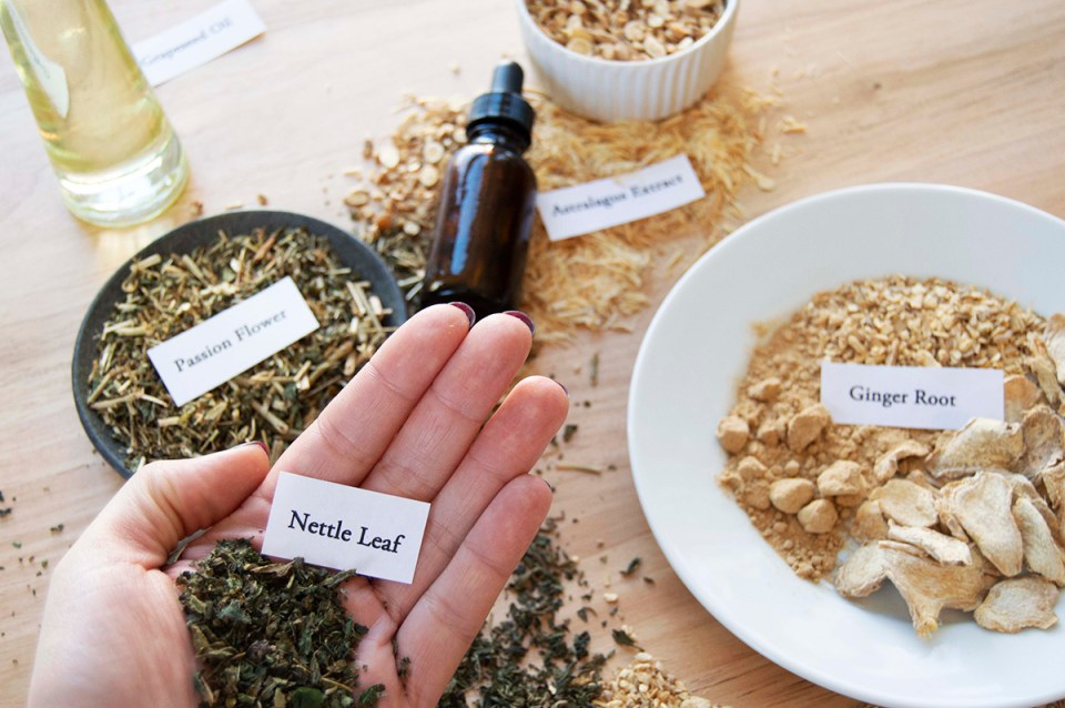 What Could Changes In FDA Dietary Supplement Regulations Mean For Herbalists? | Herbal Academy | Learn how potential changes to FDA dietary supplement regulations surrounding the use and sale of herbs as dietary supplements may effect herbalists.