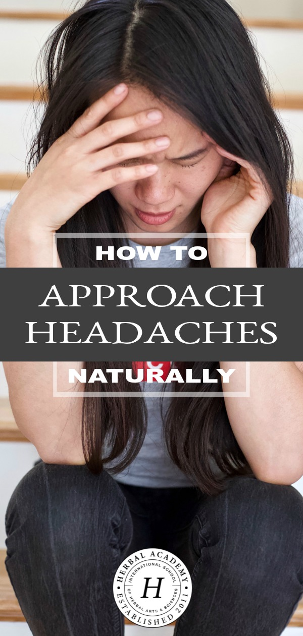 How To Approach Headaches Naturally | Herbal Academy | Learn how dietary, herbal, and lifestyle factors can help you keep headaches at bay or approach headaches naturally if they do occur.