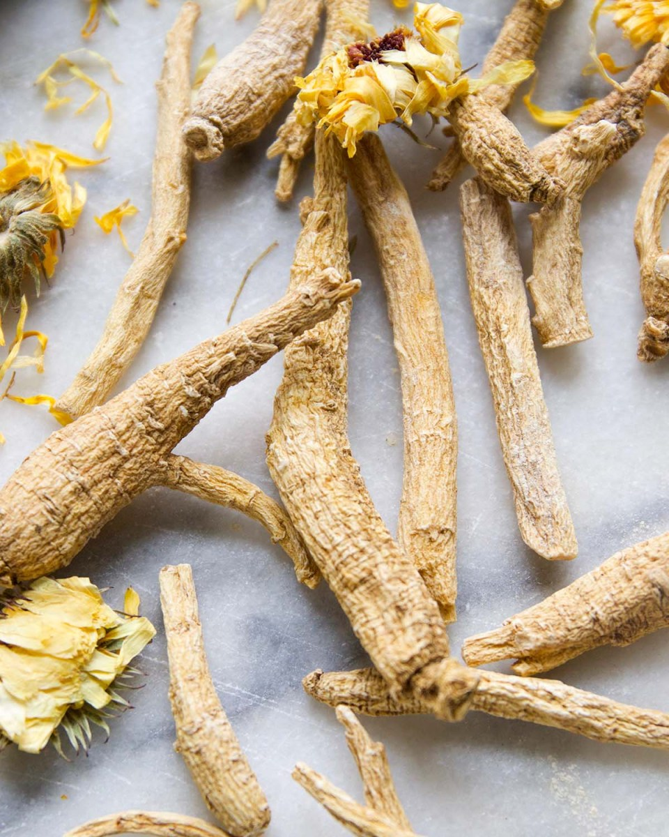 5 Multi-Use Herbs for your Herbal Toolkit | Herbal Academy | Choosing multi-use herbs that have numerous actions and uses can simplify your apothecary and allow you to have something on hand for common complaints.