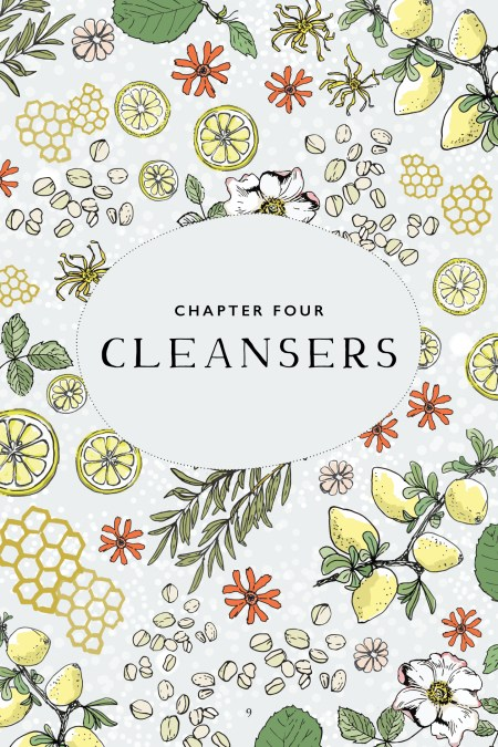 Botanical Skin Care Recipe Book Page Preview – Cleansers