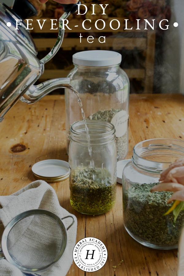 DIY Fever-Cooling Tea for Uncomfortably Hot Bodies | Herbal Academy | Learn about 4 herbs that are useful in cooling the body when a fever is present and get a recipe for a DIY fever-cooling tea blend as well!